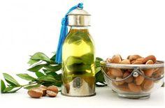 Аргановое масло для волос - отзывы о применении. Как использовать аргановое масло для волос, видео