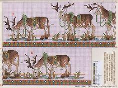 Lapland Reindeers   2/2