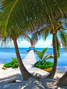 This may be a photo of Belize, but--on these cold winter days--anyplace with sun, warm water, and a sandy beach is calling to me.
