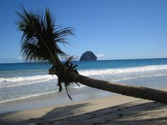 Martinique - French Island in the Caribbean. Be aware that the beaches are topless and they only speak French!