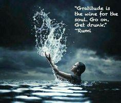 Rumi *                                                       …