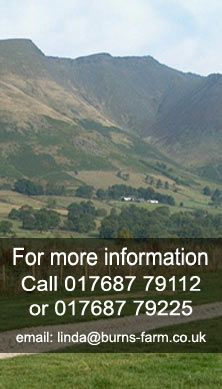 Welcome to Burns Farm Caravanning and Camping. We are a traditional caravan park and campsite in the Lake District near Keswick, Cumbria. A quiet family run site on a working farm at the bottom of the looming peaks of Blencathara, Skiddaw and Helvellyn deal for relaxing or adventure.