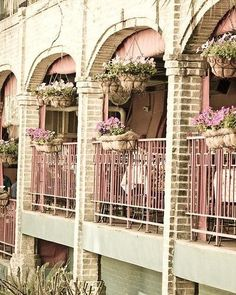 pretty pink balconies