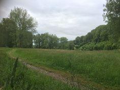 Scene_Landschap_Haasstad_1