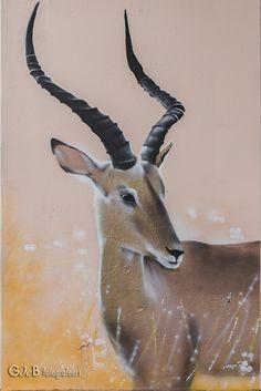 Impala grafitti by Impala, Kangaroo, Graffiti, Animals, Baby Bjorn, Animales, Animaux, Animal, Animais