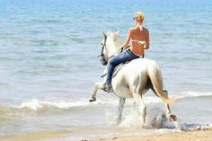 Laganas Horse Riding Center, Zakynthos: See 102 reviews, articles, and 95 photos of Laganas Horse Riding Center, ranked No.15 on TripAdvisor among 64 attractions in Zakynthos.