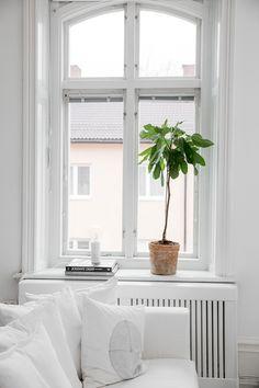 Inspiration I Fashion I Interior I Workout Scandinavian Style Home, Scandinavian Interior, Interior Windows, Interior And Exterior, Windows Decor, Living Room Inspiration, Interior Inspiration, Monochrome Interior, Beautiful Interior Design