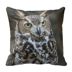 $$$ This is great for          	Great Horned Owl 5 - Throw Pillows           	Great Horned Owl 5 - Throw Pillows so please read the important details before your purchasing anyway here is the best buyDeals          	Great Horned Owl 5 - Throw Pillows Review from Associated Store with this Deal...Cleck Hot Deals >>> http://www.zazzle.com/great_horned_owl_5_throw_pillows-189133254619732781?rf=238627982471231924&zbar=1&tc=terrest