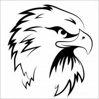 Black and White Eagle Head Clipart - Cliparts and Others Art Inspiration Wood Burning Patterns, Wood Burning Art, Eagle Drawing, Line Drawing, Deer Drawing, Image Tigre, Stencil Art, Stencils, Logo Animal