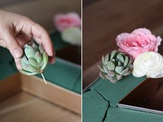 Succulents don't have stems you can you use a toothpick