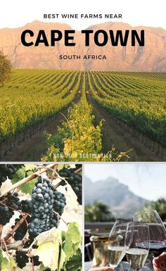 With so many gorgeous, award-winning wine farms near Cape Town, travellers and locals are well and truly spoiled for choice. Here's a selection of the best wineries near Cape Town that stand out above the rest - Non Stop Destination | #winetastingSA #visitcapetown #stellenbosch #franschhoek #southafrica #capetown |