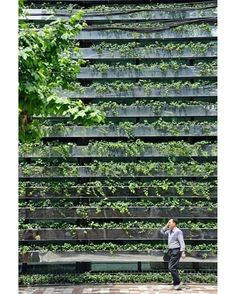 Green Facade in Shanghai by Kengo Kuma* Green Architecture, Sustainable Architecture, Landscape Architecture, Architecture Design, Ancient Architecture, Urban Landscape, Landscape Design, Habitat Collectif, Vertikal Garden