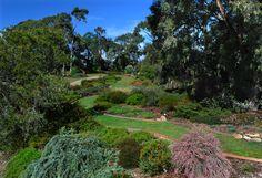 Garden Design | Austplant