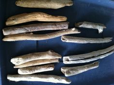 12 Pieces Round Shaped Natural Driftwood Pieces by caroledoc, $5.00