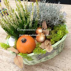 Composizioni+con+l'Erica+per+un+autunno+fiorito.