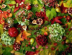 Autumn Selection by Barbara van Zanten Garden Plants, Floral Arrangements, Photographs, Boards, Van, Cottage, Gardening, Seasons, Vegetables