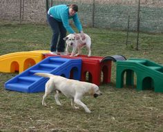 outdoor playground for dogs | Puppy playground equipment gives dogs plenty of activities to engage ...