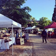 Nevada County Growers Market has returned, lots of great local produce, food stalls and crafts available Saturdays, 8-12 at the North Star House in Grass Valley.  Photo by my friends at Fable Coffee.