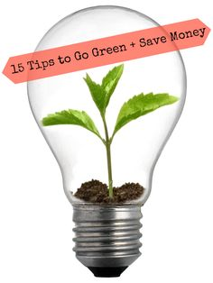 15 Tips to Save Money While Going Green on http://allielefevere.com