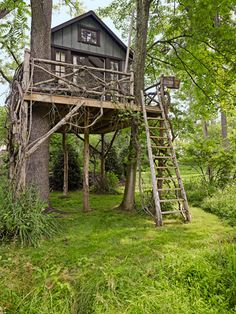 How amazing is this treehouse?! #treehouse #countryliving