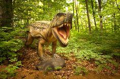 Trei antreprenori au investit 5 mil. euro într-un parc de dinozauri la Râşnov. GALERIE FOTO