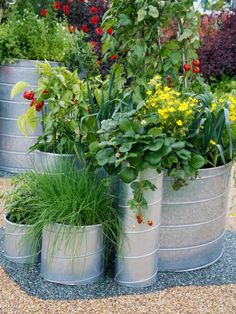Containers of varying heights and widths decorate this raised vegetable patch of chives, peppers, leeks, strawberries and tomatoes.
