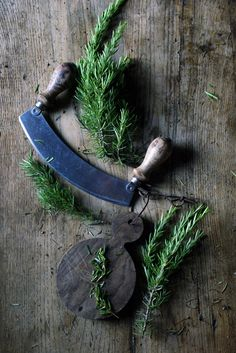 ...fresh spears of rosemary... grows all year in the garden...