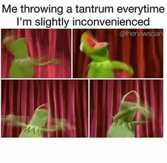 Me throwing a tantrum every time I'm slightly inconvenienced.