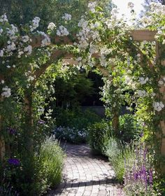 Fabulous Useful Tips: Garden Ideas For Small Spaces Gravel backyard garden layout dreams.Little Garden Ideas How To Build simple garden ideas mulches. Back Gardens, Outdoor Gardens, Small Gardens, Petite Pergola, Garden Arches, Small Garden Arch, Small Country Garden Ideas, Garden Walls, Garden Entrance