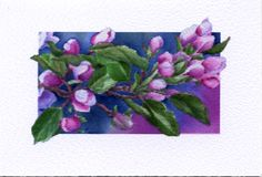 """Watercolor flowers by Mickey Baxter-Spade. Blank inside. 3.5"""" x 2.5"""". $2 each, Box of 6 cards, 6 envelopes $10"""