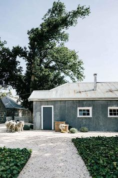 Bluestone-Bauernhaus: In dem restaurierten Gehöft in den Barunah Plains Modern Country, Country Style, Country Homes, Country Life, Chic Beach House, Shed Homes, Barn Homes, Kit Homes, Australian Homes