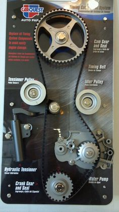 Timing belt assembly. This is what a timing belt looks like. Also shown is tensioner assembly, idler pulleys, water pump and cam crank pulleys.