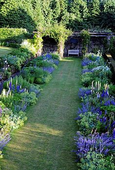 blue and white double border at High Glanau Manor