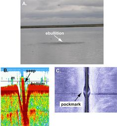 Methane seep in Arctic Lake Qalluuraq. A, Surface bubbling of lake above methane seep. B, 83-kHz seismic-reflection profile of lake-bottom depression at seep and methane bubbles (m) in water column. Horizontal black lines are depth markers, spaced at 2.5-ft intervals. Vertical scale is exaggerated in this profile. Depression is approximately 3 m across and 2.5 m deep, according to independent information provided by UAF colleagues. C, Sidescan-sonar image showing lakebed pockmark associated…
