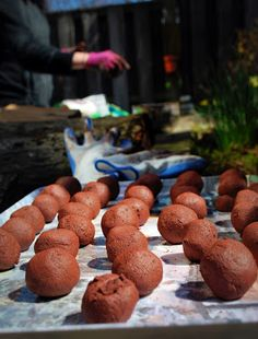 seed bombs - ive got the worm castings and the empty lot! Garden Compost, Gardening, Worm Beds, Worm Castings, Seed Bombs, Garden Seeds, Guerrilla, Worms, Diy For Kids