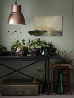 Sommarens grönska övergår nu i mossigare gröna och jordiga toner. KARPALUND/RYGGESTAD bord, HEKTAR taklampa, SINNERLIG krukor, BJÖRKSNÄS låg vas, hög vas och fat, ENSIDIG vas.