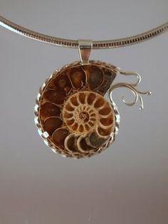 Uniquely, elegantly bezelled/tabbed ammonite pendant.