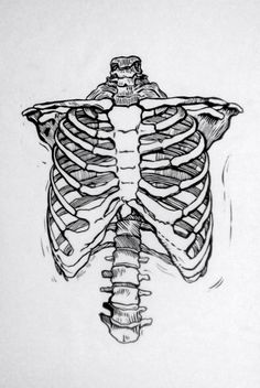 Ribcage, linocut, edition of 6 // x Rib Cage Drawing, Body Drawing, Art Sketches, Art Drawings, Tattoo Drawings, Doodle Paint, Human Figure Drawing, Feminist Art, Anatomy Art