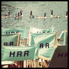 Henley Royal Regatta - Pimms, picnics, partying - and a bit of rowing too!