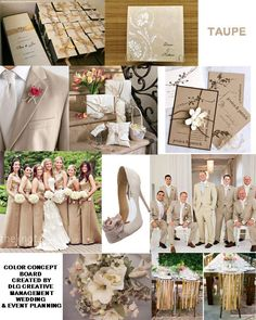 Taupe - Color Inspiration Boards (DLG Creative Management's)