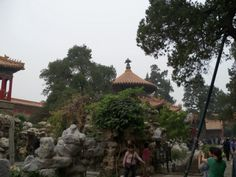 My son wanted a picture of the Imperial Garden of the Forbidden City after reading Magic Tree House. Gotta love books!