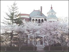 Castle in 2003 with cherry blossoms