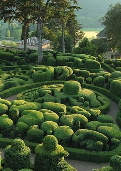 "houblon: "" Jardins de Marqueyssac, Perigord, France. """