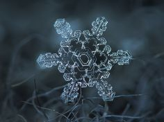 Stunning snowflakes by Alexey Kljatov.  every single one ever created is totally unique and absolutely gorgeous - what a MIGHTY AWESOME God we serve!!