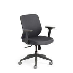 the soft spot Dark Gray Max Task Chair, Mid Back, Charcoal Frame