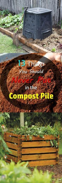 Gardening Compost Do you know what not to compost? You can compost almost any item but there are 13 things you can't compost. Find out! - Do you know what not to compost? You can compost almost any item but there are 13 things you can't compost. Find out! Compost Soil, Garden Compost, Garden Soil, Lawn And Garden, Diy Compost Bin, Making A Compost Bin, Garden Urns, Herbs Garden, Garden Edging