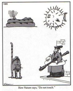 """far side - """"How Nature Says, 'Do Not Touch!'"""""""