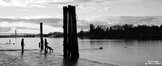 ~Fetch~By Ernie Kasper #dogs   #people   #candid   #bridge   #river   #canadianphotography