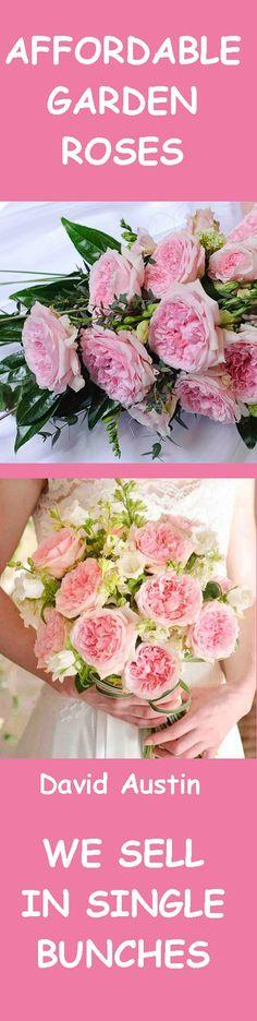 On Pinterest Rose Bouquet Rose Bridal Bouquet And Bridal Bouquets