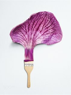 Painting Petals - Creating life from art; destroying life with our creations.